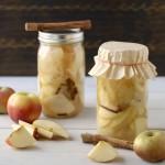 mele fermentate ricette marcello santocchini